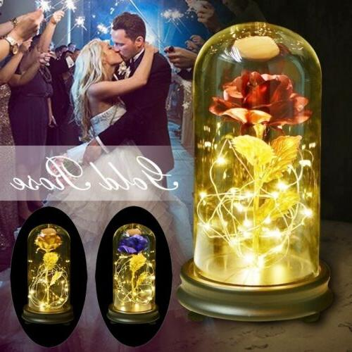 gold plated rose glass lamp led lighted