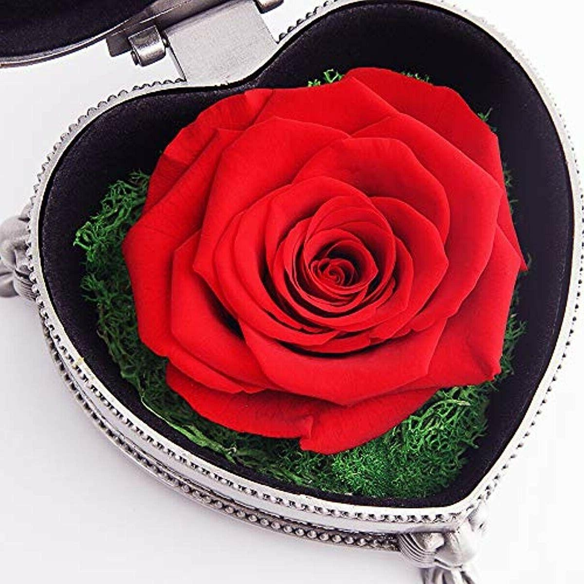 hey Rose, for Her, Mom Gifts for Valentine's Day Mother's