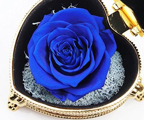 hey Rose,Never Withered Flowers,Gifts Women,Mom,Her,Girlfriend,Valentine's Day