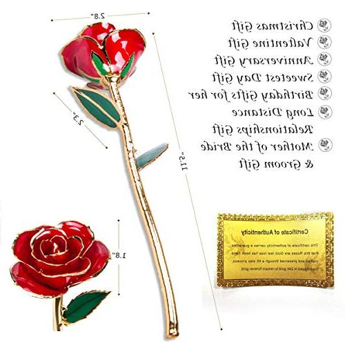Gold Rose, Sinvitron Long 24k Dipped Real Forever Anniversary for
