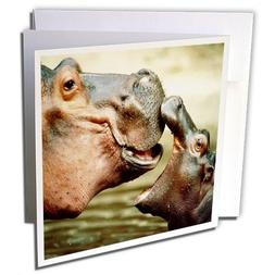 3dRose Mama Hippo Kisses Her Baby - Greeting Cards, 6 x 6 in
