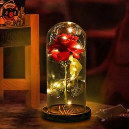 WR Beauty and The Beast Rose Glass Dome LED Lighted Mother's